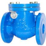 Cast Check valve, Check valve